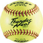 Spalding 12 In. Yellow Red Softball Image 1